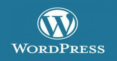 Cara Menghapus Post Revision Di WordPress