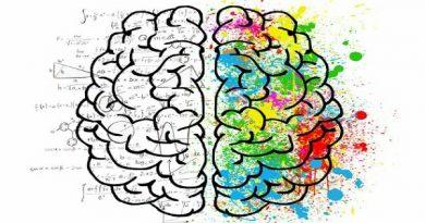 Cara Melatih Otak Kiri Anak Agar Pintar Matematika
