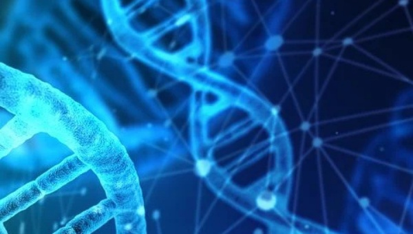 Jelaskan Mutasi yang Terjadi pada Kromosom
